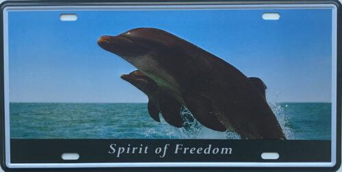 Retro metalen bord nummerplaat - Spirit of freedom