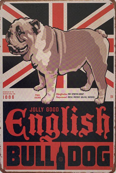 Retro metalen bord vlak - English bulldog