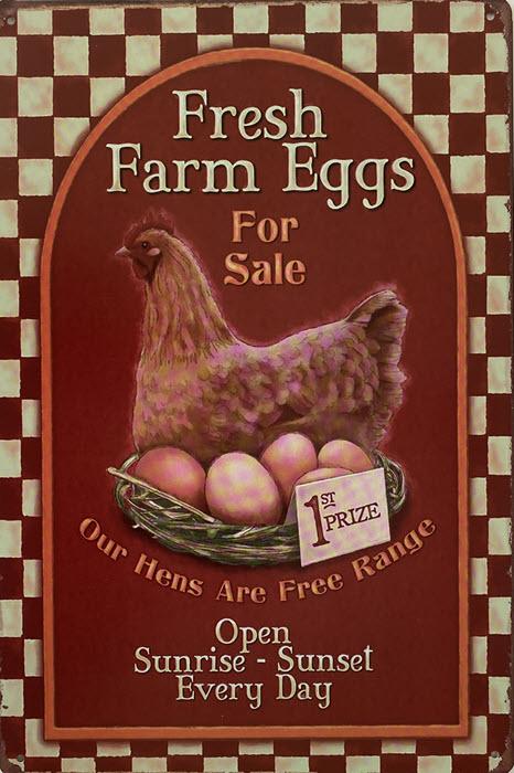 Retro metalen bord vlak - Fresh farm eggs