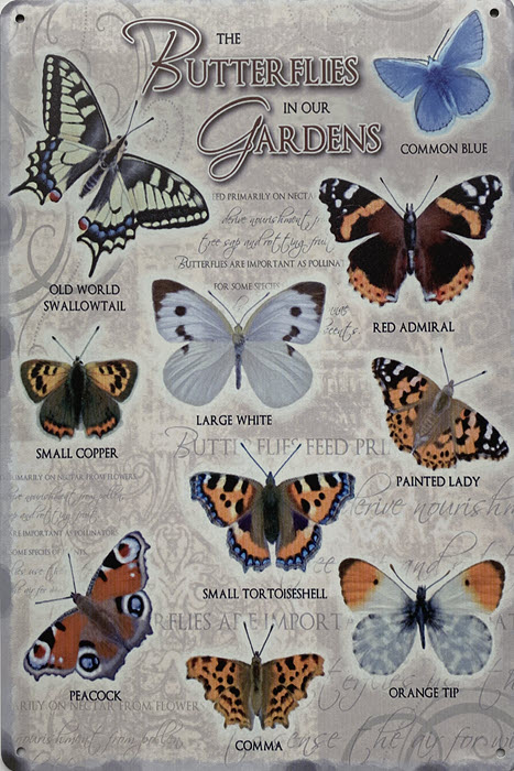 Retro metalen bord limited edition - Butterflies in our gardens