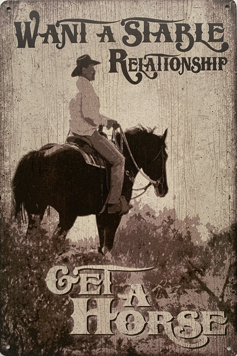 Retro metalen bord limited edition - Want a stable relationship