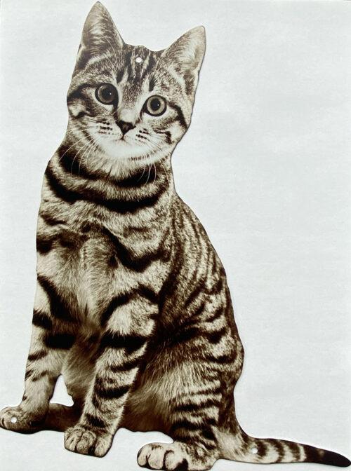 Retro metalen bord speciale vormen - Cat