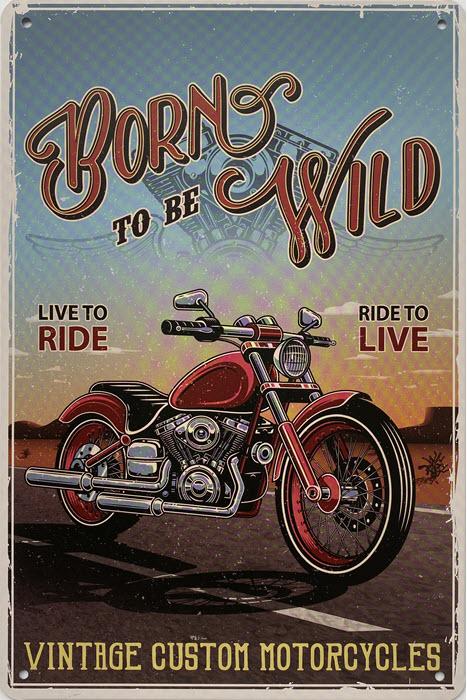 Retro metalen bord vlak - Born to be wild