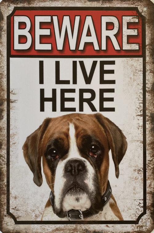 Retro metalen bord vlak - Beware Amerikaanse Bulldog