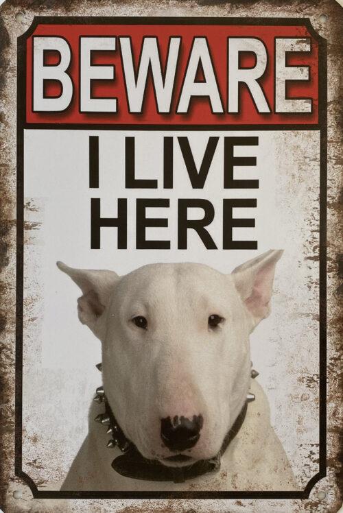 Retro metalen bord vlak - Beware Bull Terrier 2