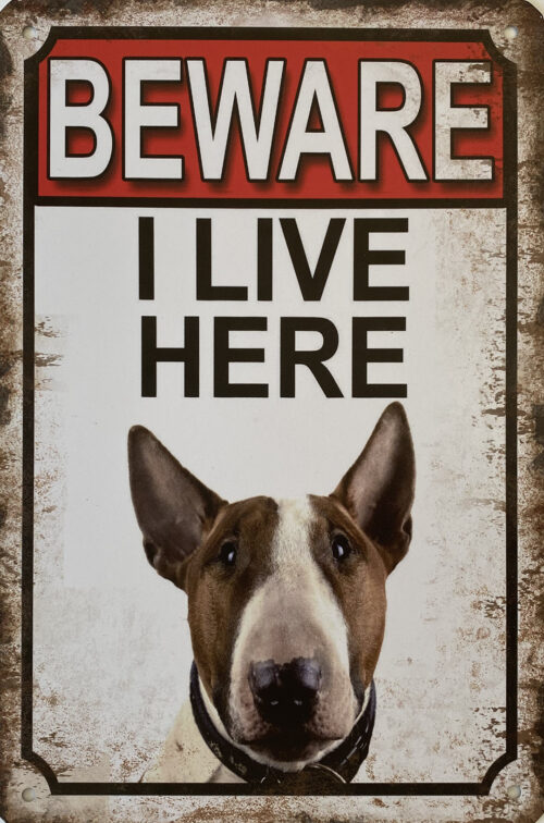 Retro metalen bord vlak - Beware Bull Terrier