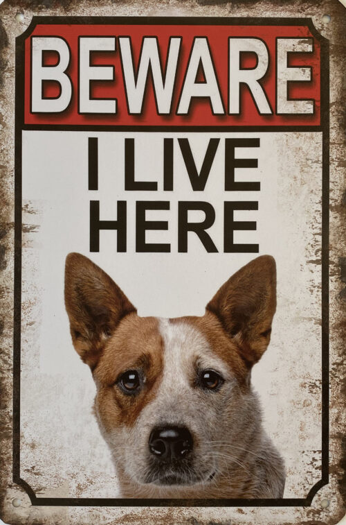 Retro metalen bord vlak - Beware dog