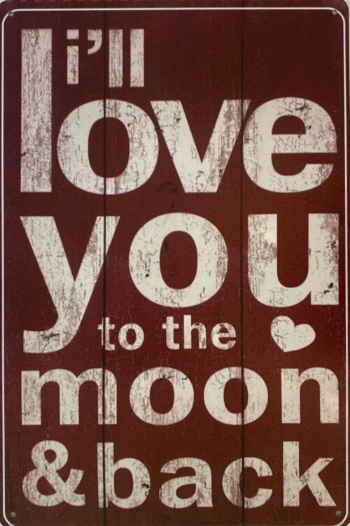 Retro metalen bord vlak - I'll love you to the moon & back